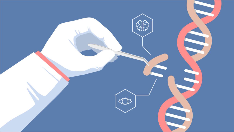 CRISPR y el vandalismo genómico